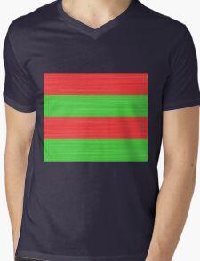 Brush Stroke Stripes: Red and Green Mens V-Neck T-Shirt