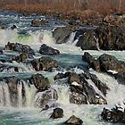Wild River by Lanis Rossi