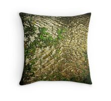 Magical Waters Throw Pillow