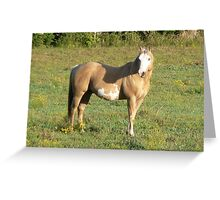 A Golden Morning Greeting Card