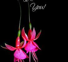 Dangling Fuchsia by Maria Dryfhout