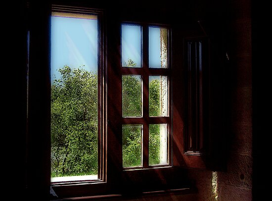The Palace Window by Lois  Bryan