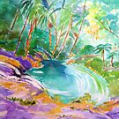 Currumbin Rock Pool Slide  by Virginia McGowan