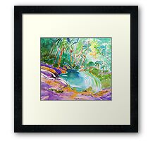 Currumbin Rock Pool Slide  Framed Print