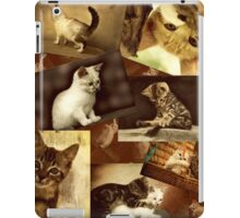 Cute Kittens at play - Collage iPad Case/Skin