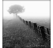 Mono 8 Photographic Print