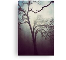 Silent Anticipation Canvas Print