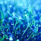 blue disco by Aimelle