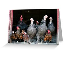 The Barnyard Family Greeting Card