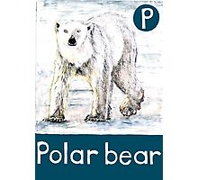 P is for Polar bear Photographic Print