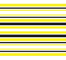 Bumble Bee Stripes Photographic Print