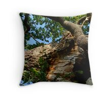How Mighty Are The Fallen Throw Pillow
