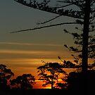 Werribee sunset by Wayne England