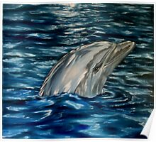 Dolphin Curiosity - Oil Painting Poster