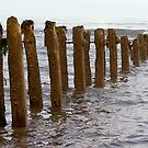 Sea Defence by Trevor Kersley