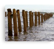 Sea Defence Canvas Print