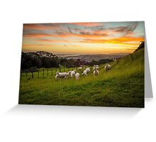 Sheep on One Tree Hill Greeting Card