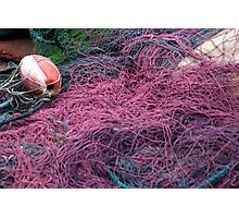 Purple Nets Photographic Print