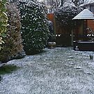 Snow in the Garden by RedHillDigital