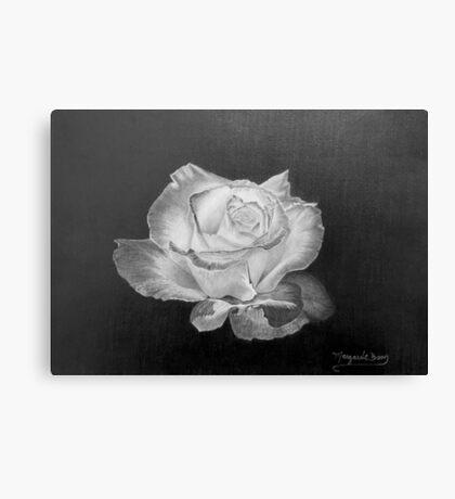 Rose in Graphite Pencil Canvas Print