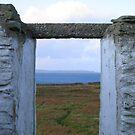 Bressay window by delfinada