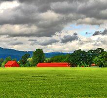 Untouched Beauty, Ridgefield  WA by Jennifer Hulbert-Hortman
