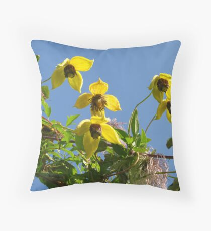 He's a long lived charmer Throw Pillow