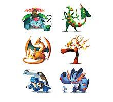third mega evolutions pokemons Photographic Print