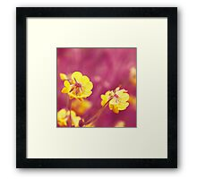 joyfulness Framed Print