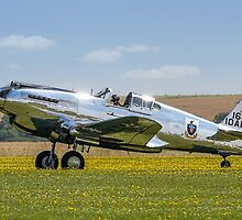 Curtiss P-40C 41-13357 N80FR out in the buttercups by Colin Smedley