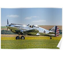 Curtiss P-40C 41-13357 N80FR out in the buttercups Poster