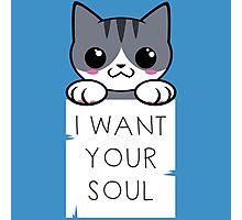 Soul Kitty Photographic Print