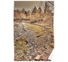Upper Mill Pond Loose Poster