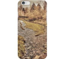 Upper Mill Pond Loose iPhone Case/Skin