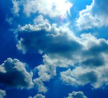 Sky by L.D. Franklin