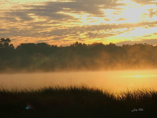 Foggy Sunrise by Judy Gayle Waller