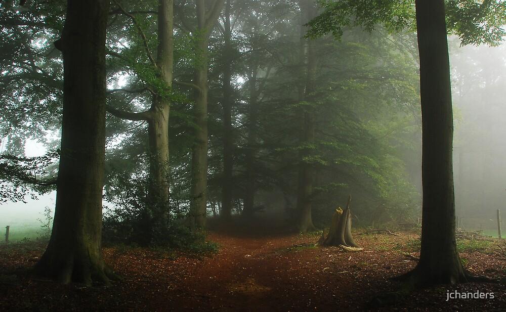 Misty enchantment by jchanders