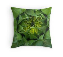 Need Sun Throw Pillow