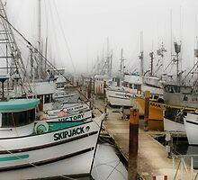 Foggy Harbor by Barbara  Brown