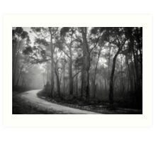 Misty Trees in Black and White Art Print