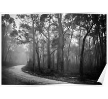 Misty Trees in Black and White Poster