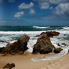 Australian Beaches by Rosina  Lamberti