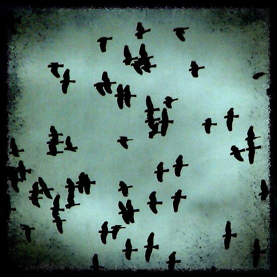 Black Birds by Kitsmumma