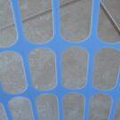 Blue Guard by Joan Wild