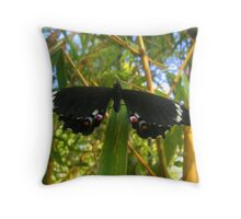 Poised For Takeoff Throw Pillow
