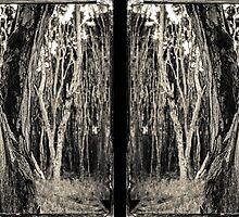 Tea Tree - diptych by Paul Alsop