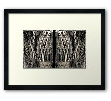 Tea Tree - diptych Framed Print