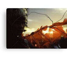 Sunset Wing Canvas Print