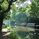 Summer on the River Wey Navigation, Wisley, Surrey, U.K. by Colin J Williams Photography