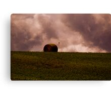 One Roll Left Canvas Print